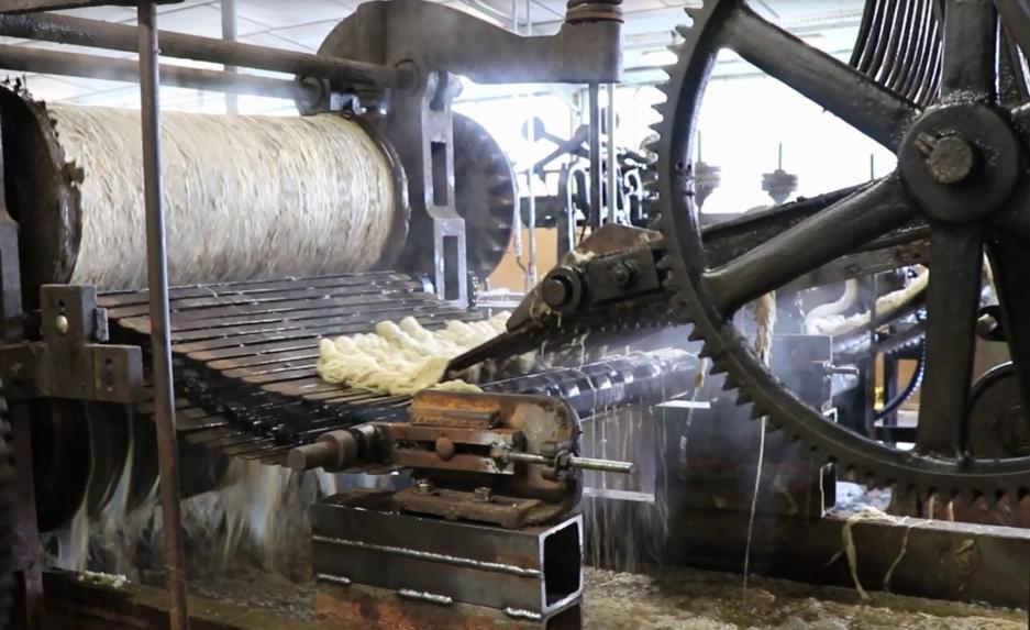 Traitement de la laine France