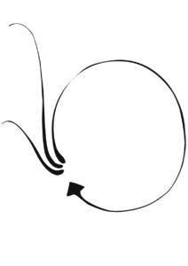 Flèche transparente