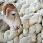 Fil à tricoter laine mérinos France