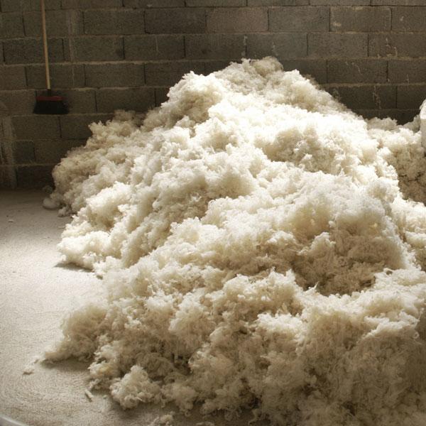 laine lavée